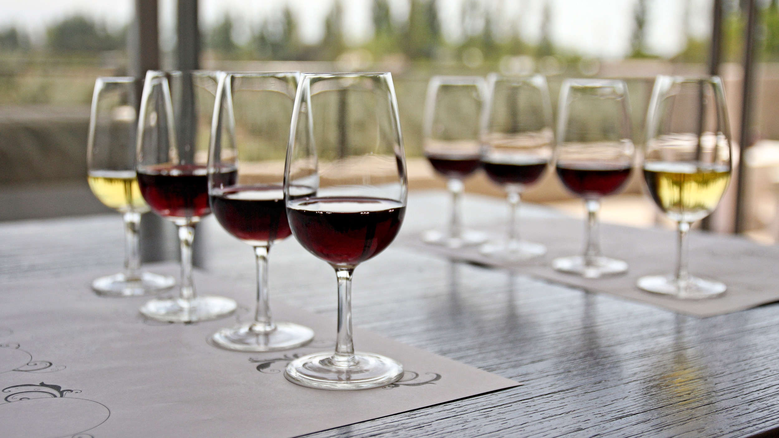 Glasses lined-up and filled with wine for wine tasting at winery, Maipu, Mendoza, Argentina.